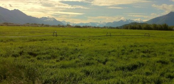 Nominations sought for the 2019 Alaska State Fair Farm Family of the Year